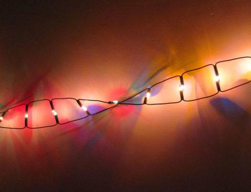 Mente, DNA e campo magnetico terrestre