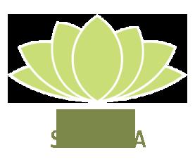 yoga saucha